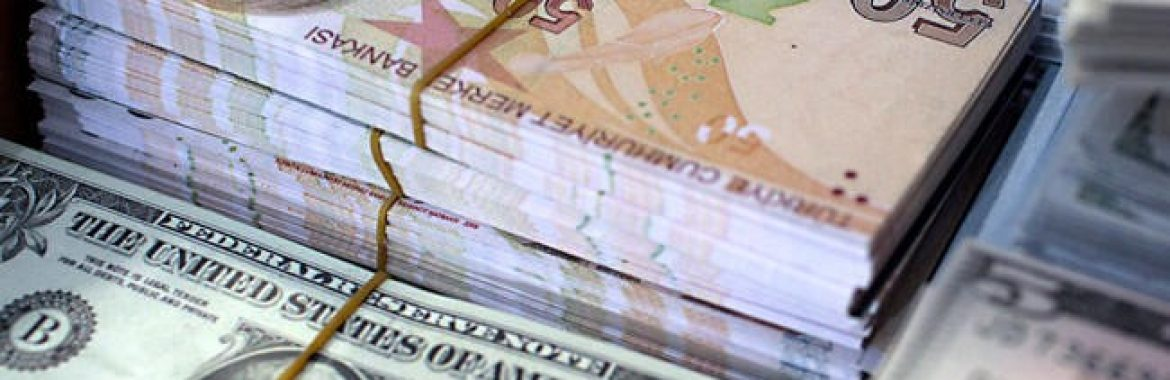 Turkish economy needs no external support: Ministry